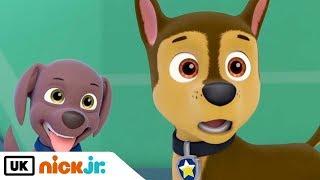 Paw Patrol   Sing Along: Friendship Song   Nick Jr. UK