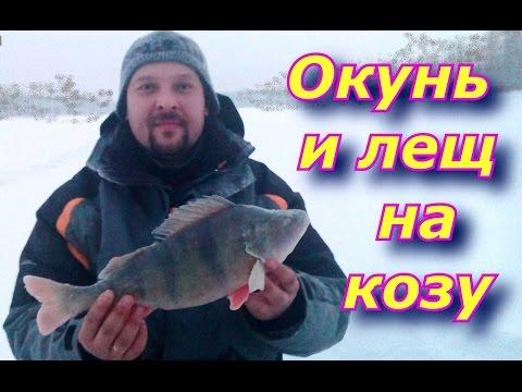 на какую мормышку лучше клюет рыба