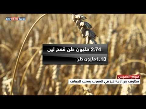 مخاوف من أزمة خبز في المغرب
