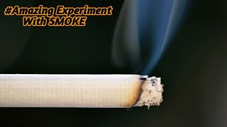 AMAZING SCIENCE EXPERIMENT WITH SMOKE | FIRE TRICK | SCIENCE PROJECTS AND EXPERIMENTS