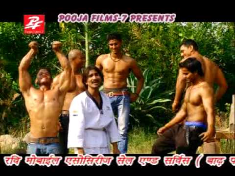 bihar vs raj thakare songs (shailesh sawriya)
