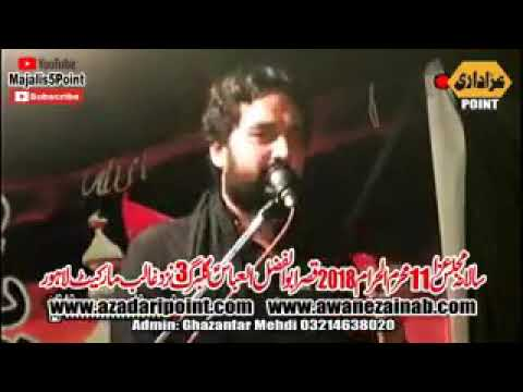 11 Muharam 2018 | Zakir Waseem Abbas Baloch | Lahore