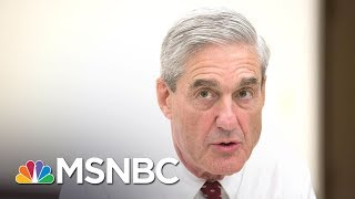 IRS 'Specialized, Secretive Investigative' Unit Aiding Robert Mueller | The Last Word | MSNBC