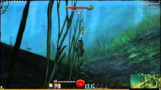Guild Wars 2: Under Water Combat - A Closer Look