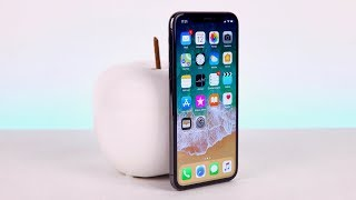 100 Tage iPhone X | Review