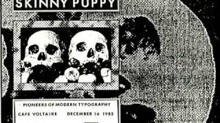 Watch Skinny Puppy Three Blind Mice video