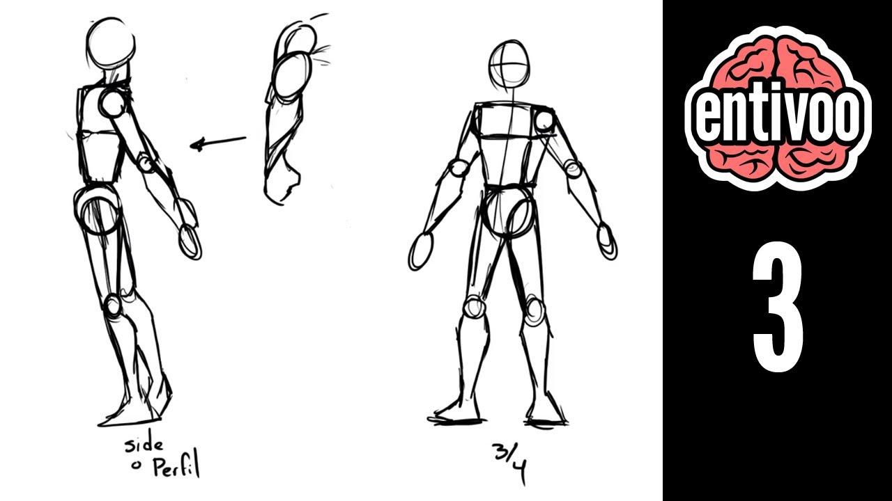 Aprende a dibujar el esqueleto y sus proporciones - Parte