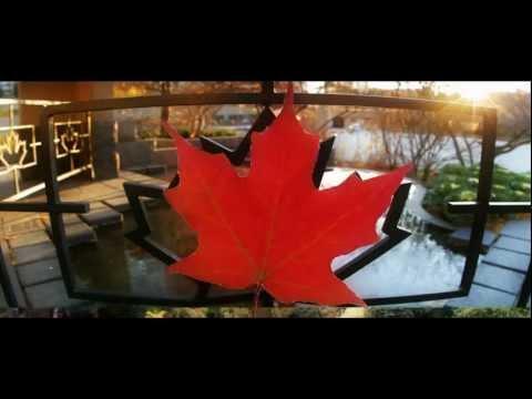 CANADA avec les bureaux de change ICEF (International Currency Exchange France)
