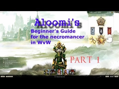 Beginner's guide for the necromancer in WvW play