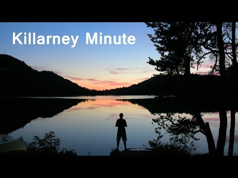 Killarney Minute