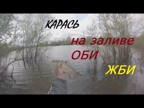 видео рыбалка ловля карася в сибири