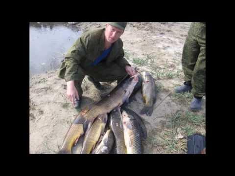 рыбалка в избербаше
