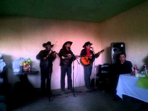 Trio Nueva Imagen (corrido de Lamberto  Quintero )