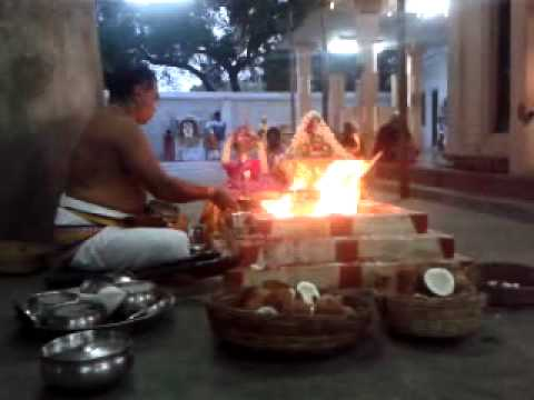Ganapathy Homam  Tapovanam video