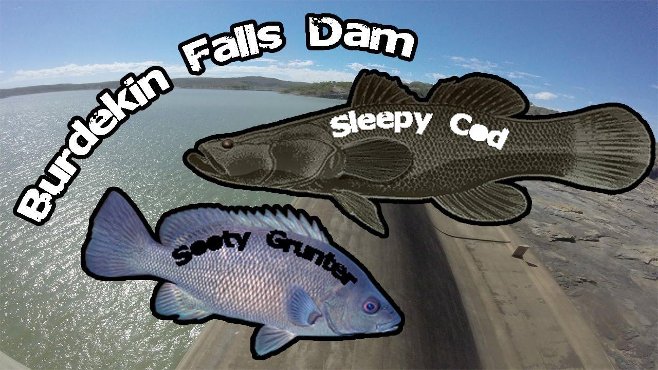 Burdekin Dam Fishing Fishing Burdekin Falls Dam
