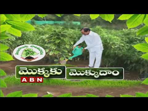 All Set for 4th Phase of Haritha Haram Program in Gajwel | ABN Telugu