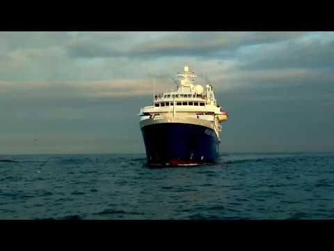 Wolters Reisen | Ocean Diamond Greenland | Iceland ProCruises