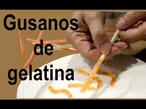 Gusanos de gelatina Halloween. Jelly worms