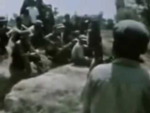 Phim Tài Liệu Chiến Tranh Biên Giới Việt  Trung 1979 Và Tình Hình Đông Dương video