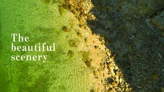 【美しき故郷しぶし・自然編】志布志市プロモーションビデオ 【公式】