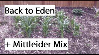 Different Methods Of Gardening Mittleider Back To Eden