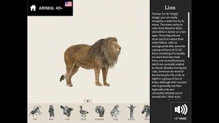 Hướng dẫn cài đặt Animal 4D+ và tải trọn bộ 26 hình ảnh Animal 4D Card