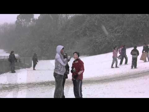 Snow in Glasnevin, Dublin, Ireland,