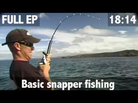ULTIMATE FISHING - Old School Snapper Fishing