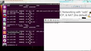 Linux Containers (LXC) Networking Deep Dive - Video 003a - LXC veth Adapters w/Bridge Int. (br0)