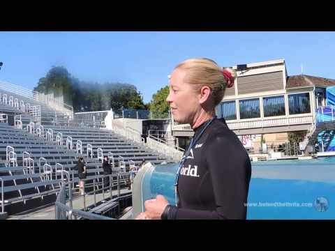 SeaWorld San Diego Killer Whale Trainer Talks Blackfish and Captivity