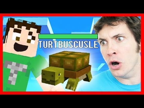 Best of Minecraft – PET TURTLE! – 2MineCraft.com