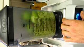 Vitamix Whole Apple Test