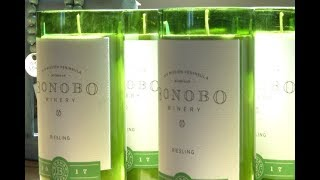 BrewVine: Bonobo Winery