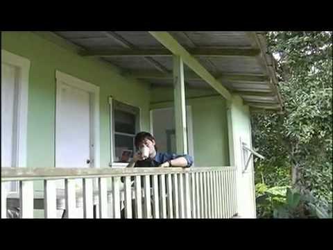 Kotaro Oshio - Big Island