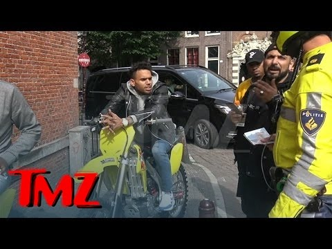 Chris Brown -- Stoned and Charming During Traffic Stop