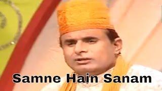 Samne Hain Sanam Aur Kya Chahiye | Zaheer Miyan Qawwali | Rang E Sailani | Teena Audio
