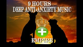 9 Hours of Deep Separation Anxiety For Dog Relaxation(tested)  from Calm My Dog House-Music Relaxation Therapy