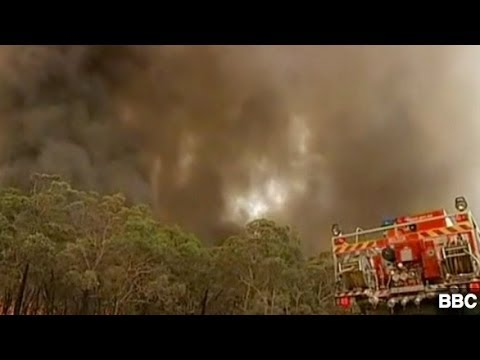Australia Experiencing Worst Fire Season in 40 Years