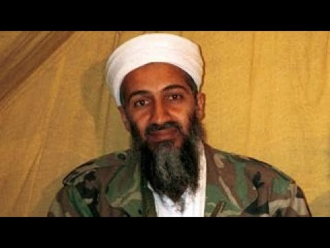 What can be learned from the Bin Laden files?