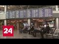 В аэропорту Внуково задержан таджик со взрывчаткой mp3