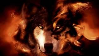 Iliya Zaki - Rise of Fire Extended