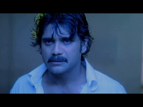 Boss Movie Songs - Velutunna Velutunna - Nagarjuna Nayantara