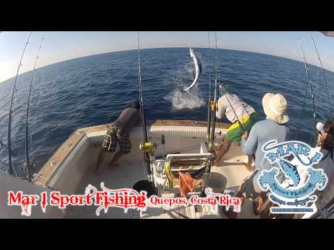 Quepos Billfish Cup Day 3