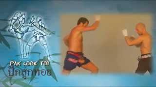 Pak Look Toi - mae mai muay thai #8