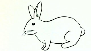 How to draw a rabbit or bunny- in easy steps for children. beginners