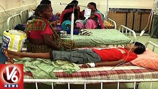 Dengue Menace In Karimnagar Dist   People In Panic Situation With Spread Of Viral Fever