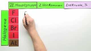 Vorkommen der Elemente der VII Hauptgruppe  Chemie