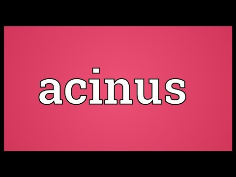 Header of acinus