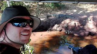 Meeting Big Crocodile in Chobe NP Botswana May 2018