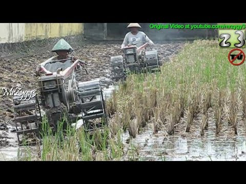 2 Yanmar Two Wheel Tractor Best Partner Plowing Teamwork